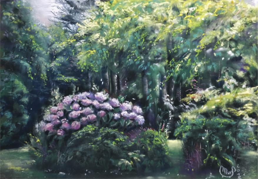 Les Hortensias de Squividan